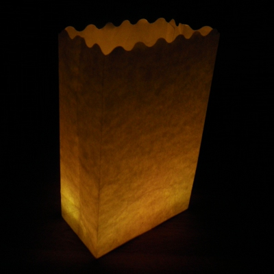 plain luminaire candle bags