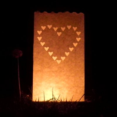 heart luminaire candle bags