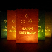 20cm colour birthday candle bags
